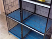 cage 8 portion unused