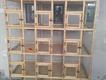15 portion Breeder new wooden cage