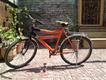 Oscar bicycle Model 2013