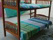 bunk cum single beds