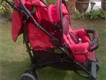 Black and Red matt finished twin stroller