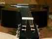 Begginers Guitar