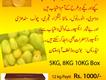 Multan Mango